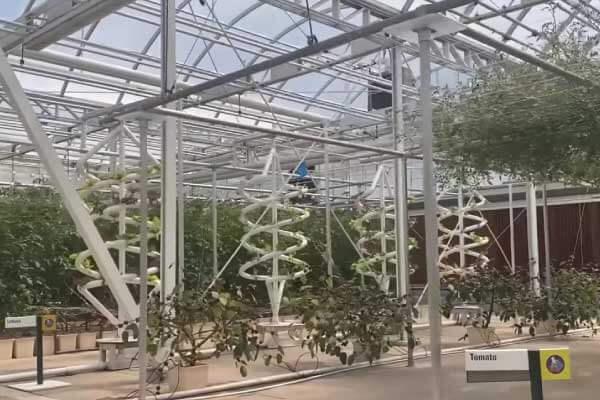Guinness-World-Records Disney World Epcot